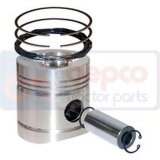 Piston avec segments 0,020-0,51mm pour David Brown 1490-1410622_copy-20