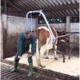 Portique pour les soins des pied des bovins-153024_copy-20